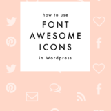 Font Awesome Icon Tutorial for Wordpress | The Blog Market