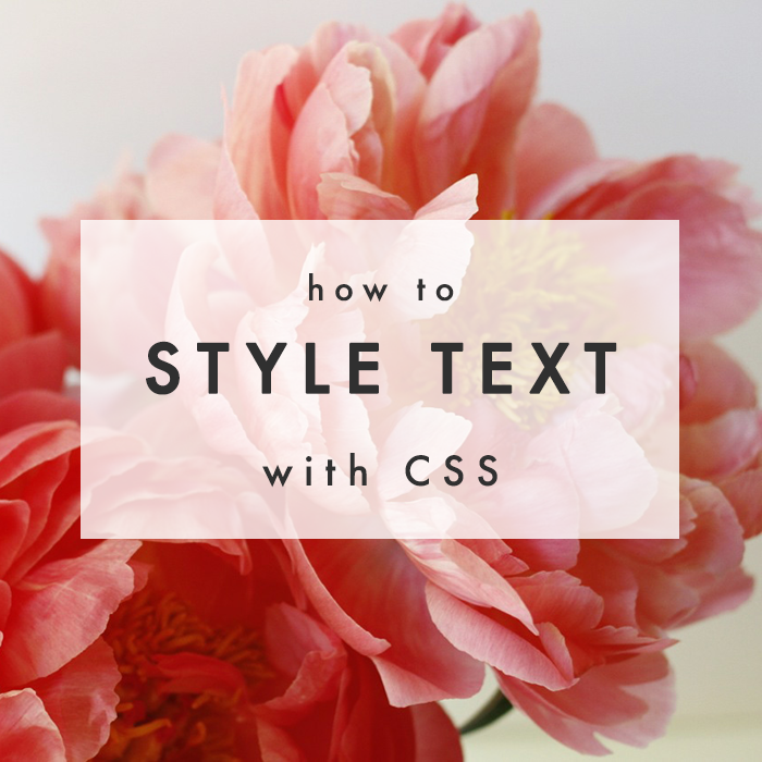 CSS Basics: Styling Your Text - The Blog Market
